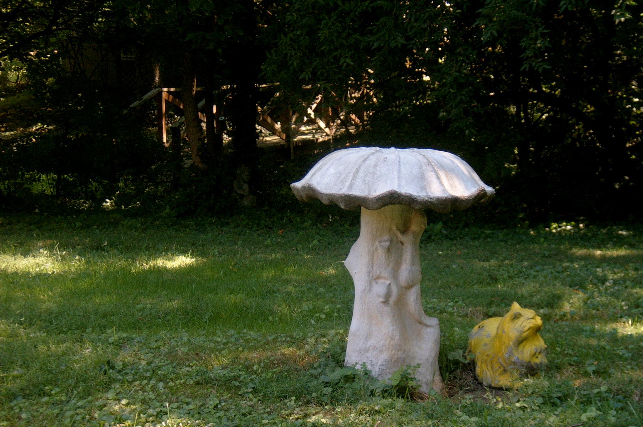 Huge Mushroom!